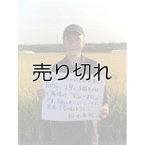 画像1: 新井秀明