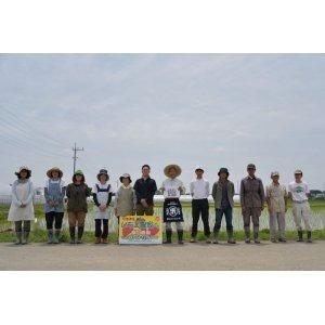 画像3: (株)横田農園 令和2年産 埼玉県吉見町産米